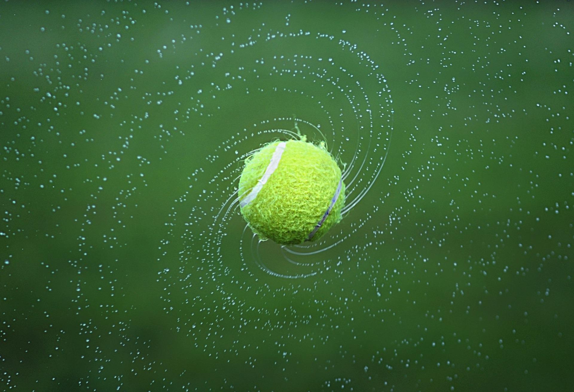 Ana Bogdan, învinsă de Danielle Collins, în primul tur la Australian Open