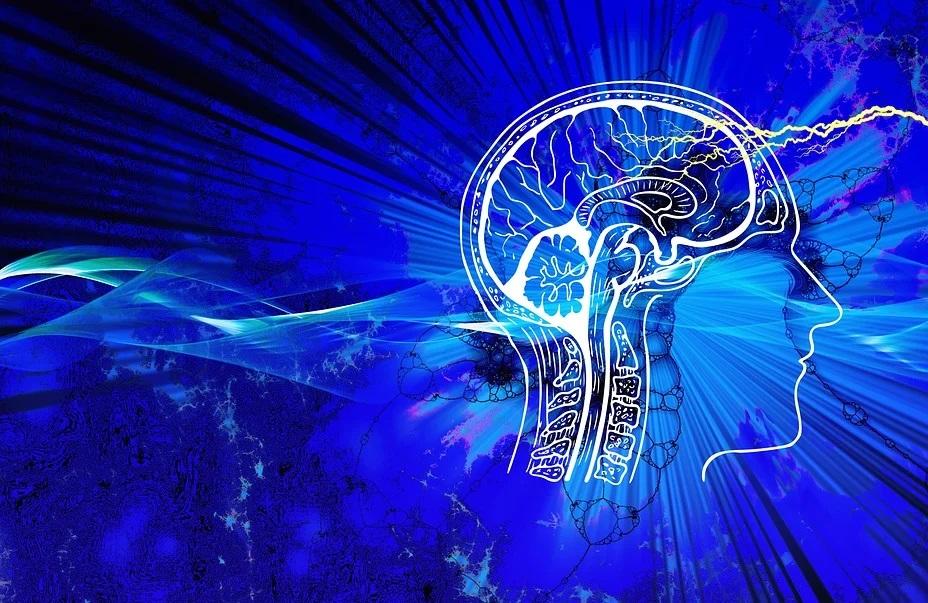 STUDIU: COVID-19, capabil să invadeze creierul