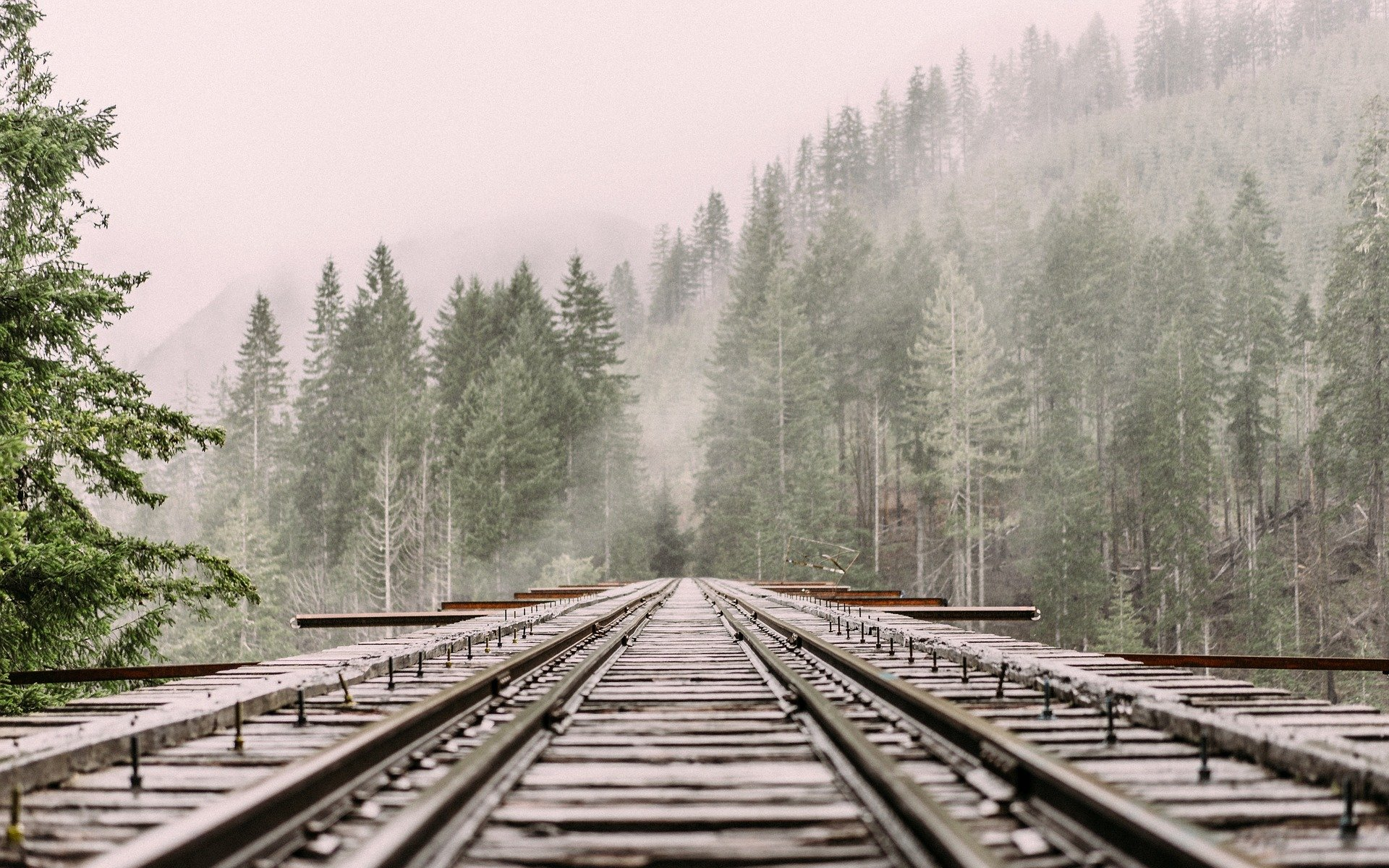 Un tren marfar încărcat cu huilă a deraiat la Petrila